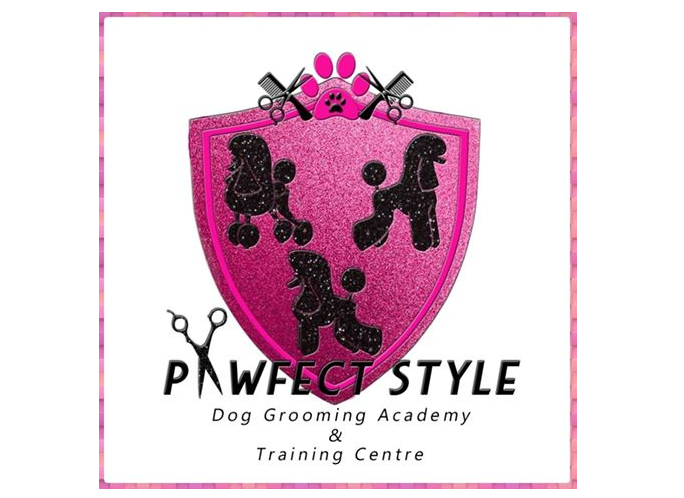 The Groomers Spotlight | Pawfect Style 100% success rate